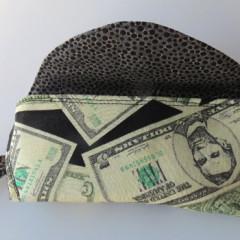 Money eye glass case