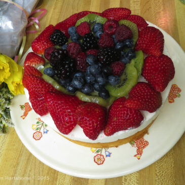 Birthday Berry Shortcake