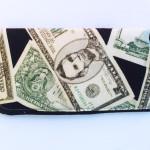Money Eyeglass Case